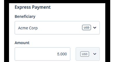 express-payment3.png