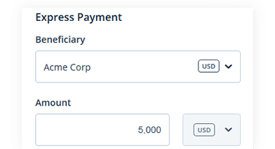 express-payment3.png